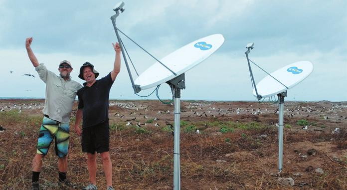 Satellite Internet Helpingprotect Endangered Turtles